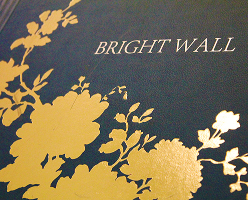 papel de parede classico bright wall reflections